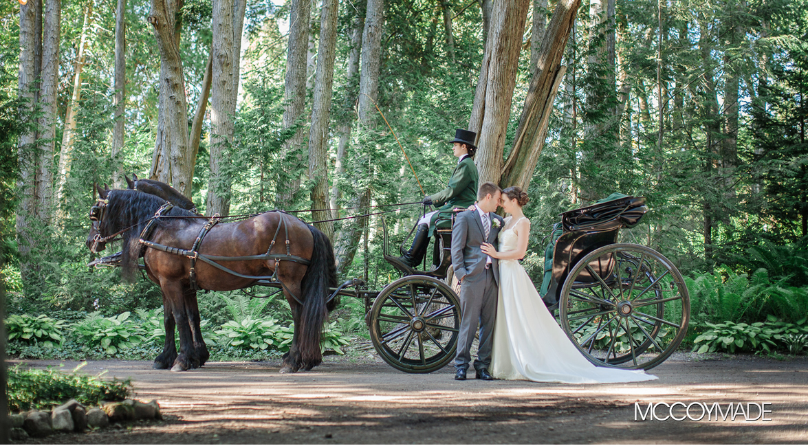 Wedding Carriage in Woods on Mackinac